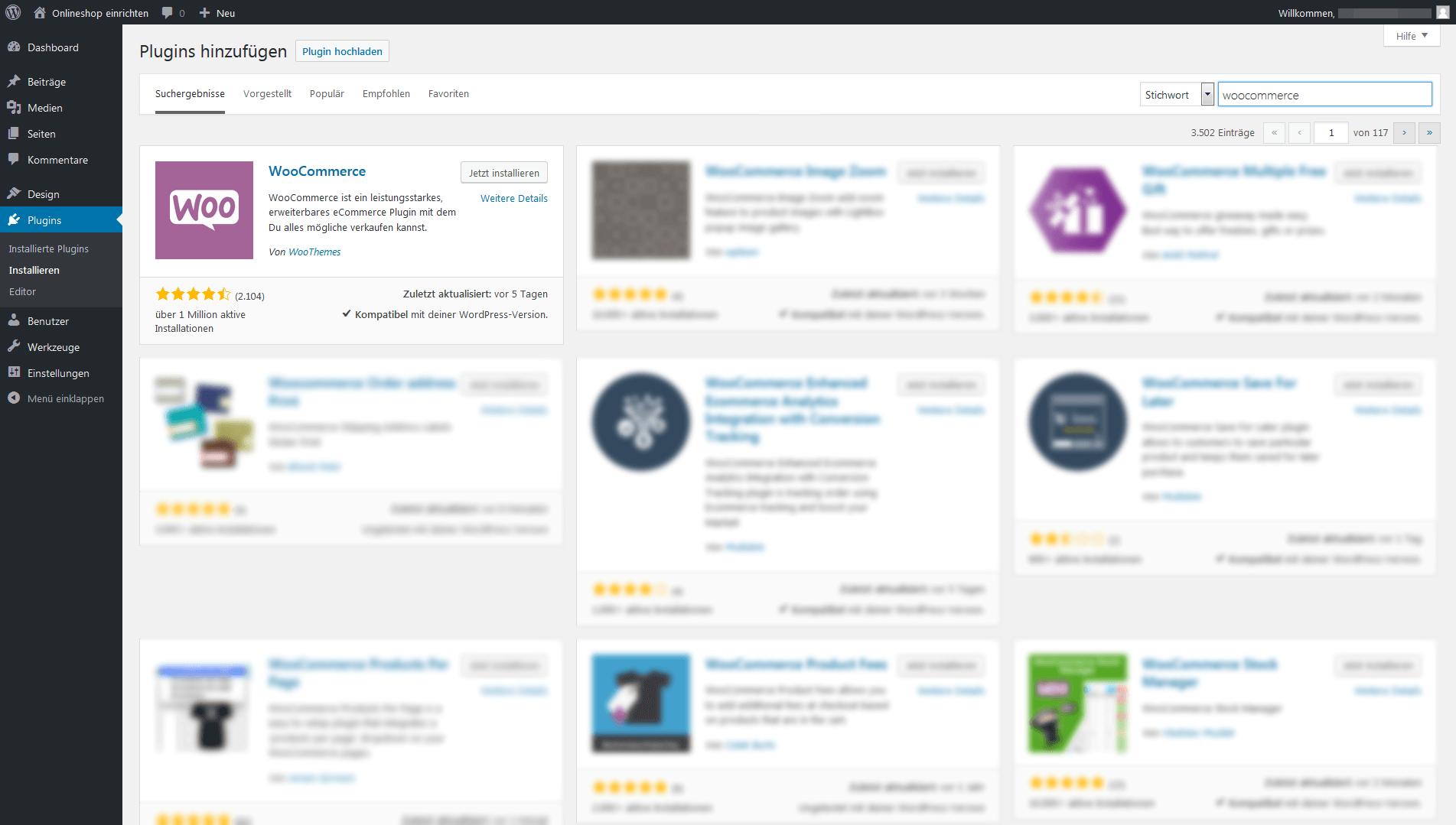 Onlineshop Erstellen Mit Wordpress 11 Ionos