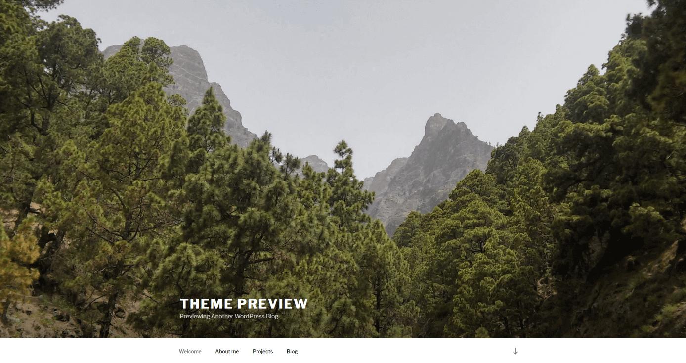 WordPress-Themes 2018: Die besten Designs für Ihre Website - 1&1